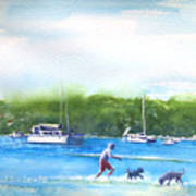 Playing With The Dogs At Rose Bay Art Print