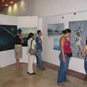 Plaza Pelicanos Art Print