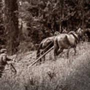 Plowman And Team Of Horses Art Print