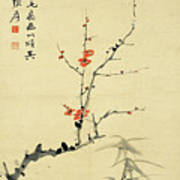 Plum And Bamboo Art Print