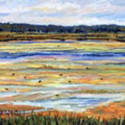 Plum Island Salt Marsh Art Print