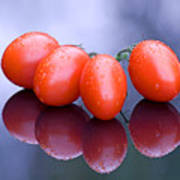 Plum Tomatoes Art Print