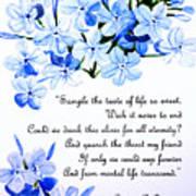 Plumbago   Poem Art Print