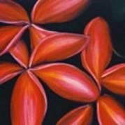 Plumeria Rouge Art Print