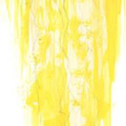 Poinciana Tree Yellow Art Print by Anthony Burks Sr