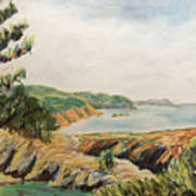 Point Lobos Art Print by Don Perino