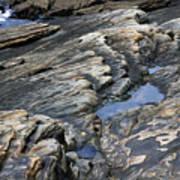 Point Lobos Rock 4 Art Print