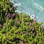 Point Reyes National Seashore Coast On Pacific Ocean Art Print