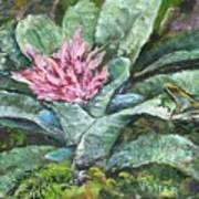 Poison Dart Frog On Bromeliad Art Print