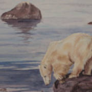 Polar Bear Fishing Art Print