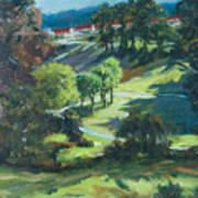Polin Springs Art Print