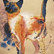 Pollock's Cat Art Print