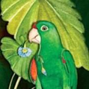 Polly Wants A Flower Art Print