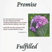 Promise Fulfilled Art Print