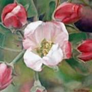 Pommier Art Print