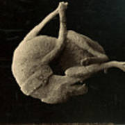 Pompeii: Plaster Cast Art Print