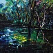 Pond 944 Art Print