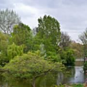 Pond At Buckingham Palace London Art Print