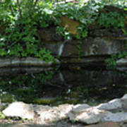 Pond At Twu 2 Art Print