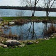 Pond By The Lake Art Print