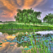 Pond Dreams 4 Art Print