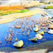 Do You Know The Secret Of The Pond Art Print