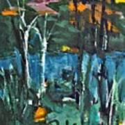 Pond Near Fourth Lake Art Print