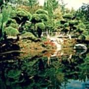 Pond Of Mirrors Art Print