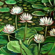 Pond Of Petals Art Print