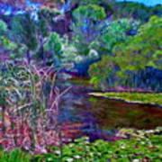 Pond Of Tranquility Art Print