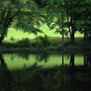 Pond Reflect Art Print