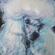 Poodle White Standard Art Print