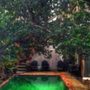 Pool With Tree Art Print