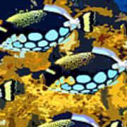 Pop Fish Art Print