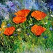 Poppies 79 Art Print