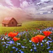 Poppies In A Dream Art Print