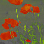 Poppies In Neon Art Print