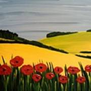 Poppies In The Hills Art Print