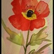 Poppy Art 17-01 Art Print