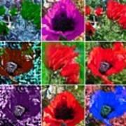 Poppy Collage Art Print