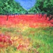 Poppy Field II Art Print