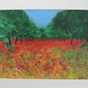 Poppy Field In Ibiza Art Print