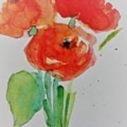 Poppy Flowers 1 Art Print