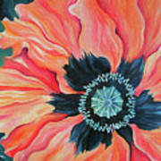 Poppy For A New Day Art Print