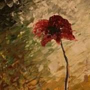 Poppy In The Dawn Art Print