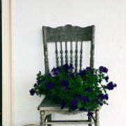 Porch Flowers Art Print