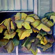 Port Norfolk Window Box Art Print