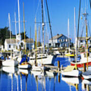 Port Townsend Harbor Art Print