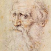 Portrait Of A Bearded Old Man Art Print