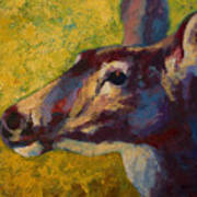 Portrait Of A Doe Art Print